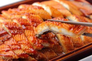 anguila portada