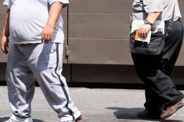 obesidad incinerar valencia