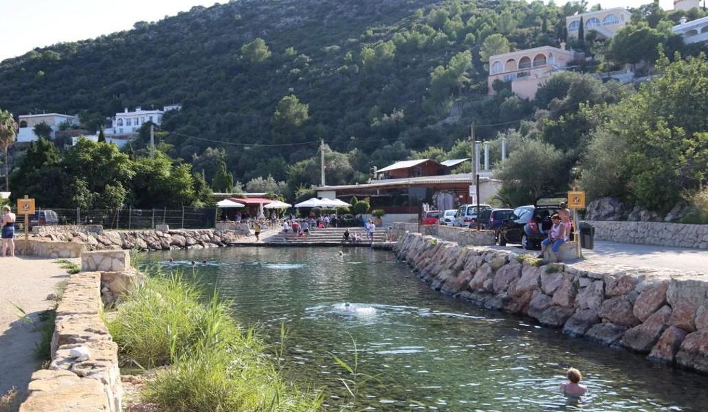 natural pool olive